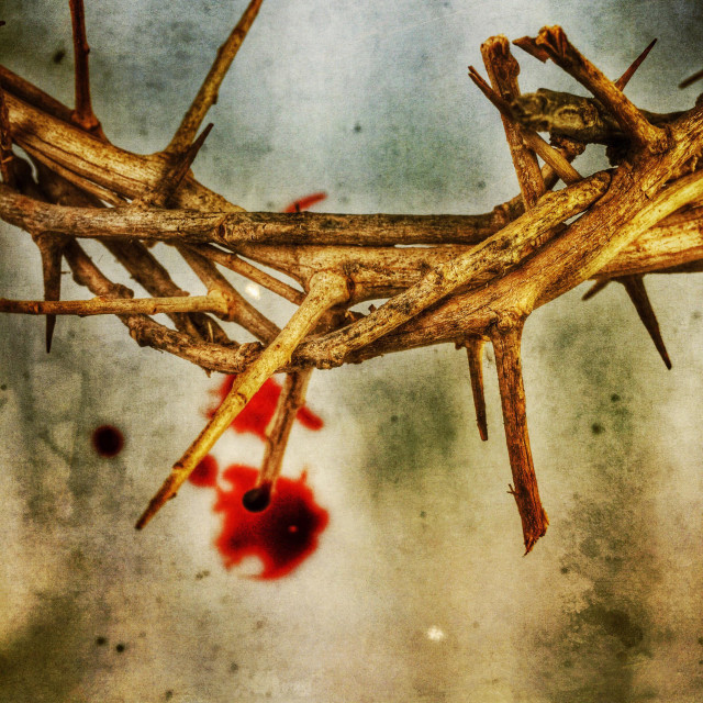 """""""Crown of thorns with blood drops."""" stock image"""