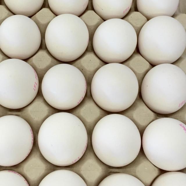 """""""Free-range eggs"""" stock image"""