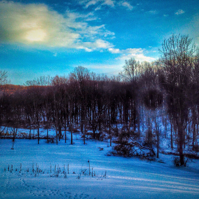 """""""Afternoon snowscape."""" stock image"""