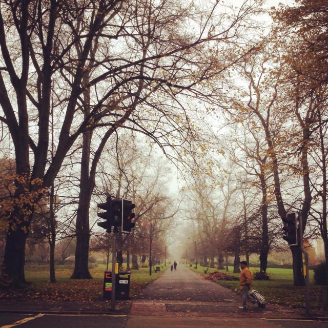 """People walking in Southampton Park next to Southampton Solent. An autumn scene. Gente andando en Southampton Park al lado de la Solent university"" stock image"