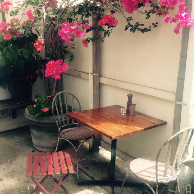 """Cafe courtyard with bougainvillea planter pot"" stock image"