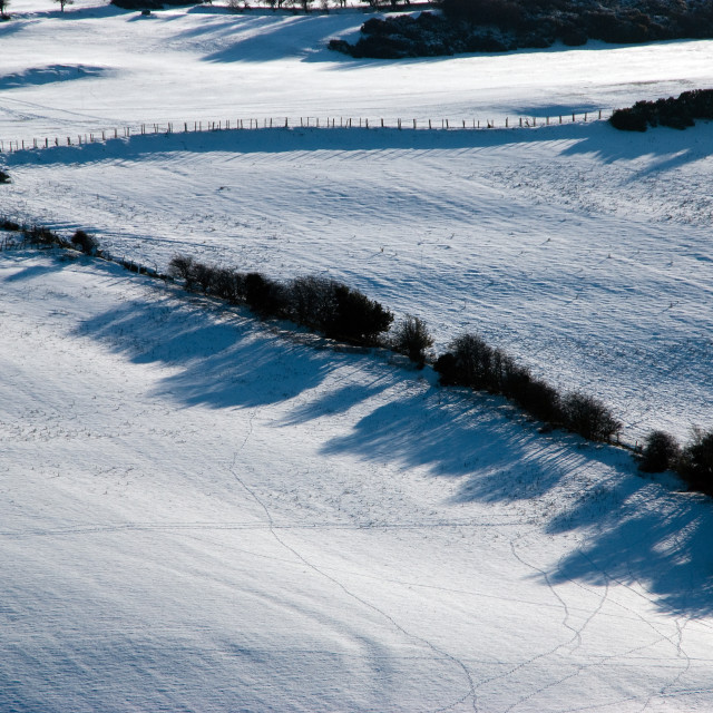 """""""Snow covered field"""" stock image"""