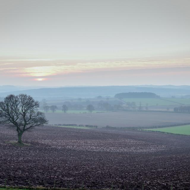 """""""UK Weather,Misty sunset in Nottinghamshire."""" stock image"""