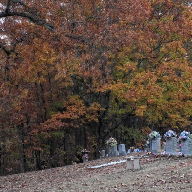 """""""Fall in the Cemetery"""" stock image"""