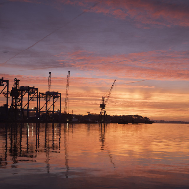 """Sunrise cranes"" stock image"