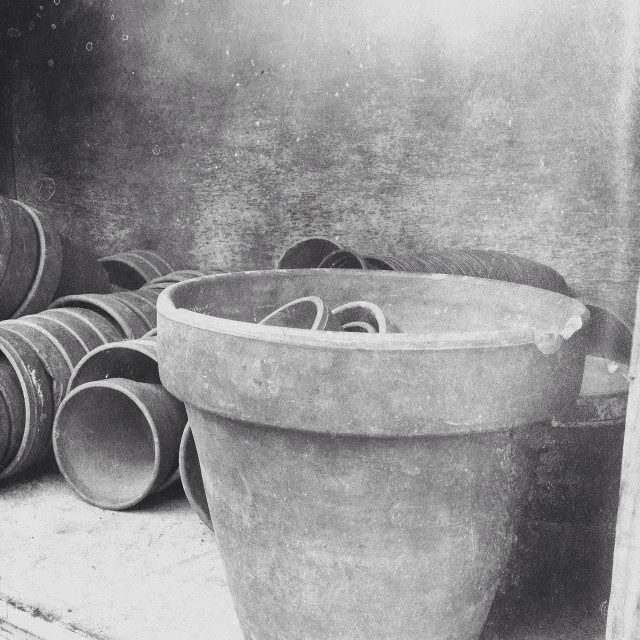 """Plant pots in a potting shed"" stock image"