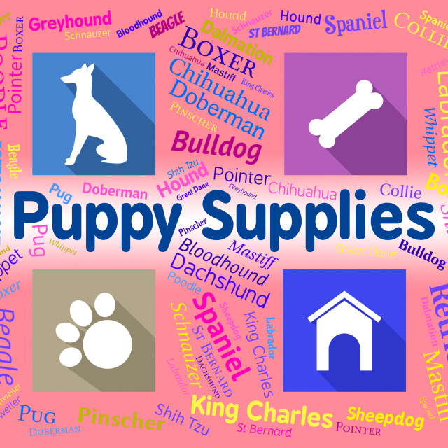 """""""Puppy Supplies Indicates Merchandise Pets And Purebred"""" stock image"""