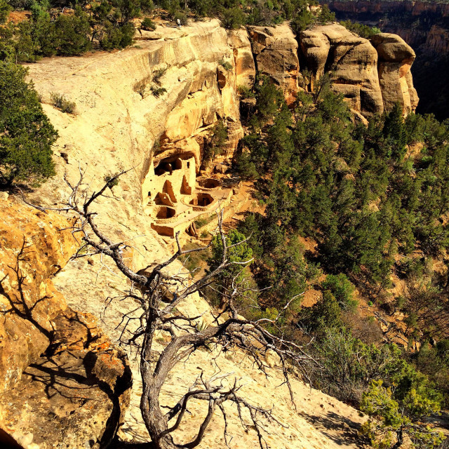 """""""A day on Mesa Verde"""" stock image"""
