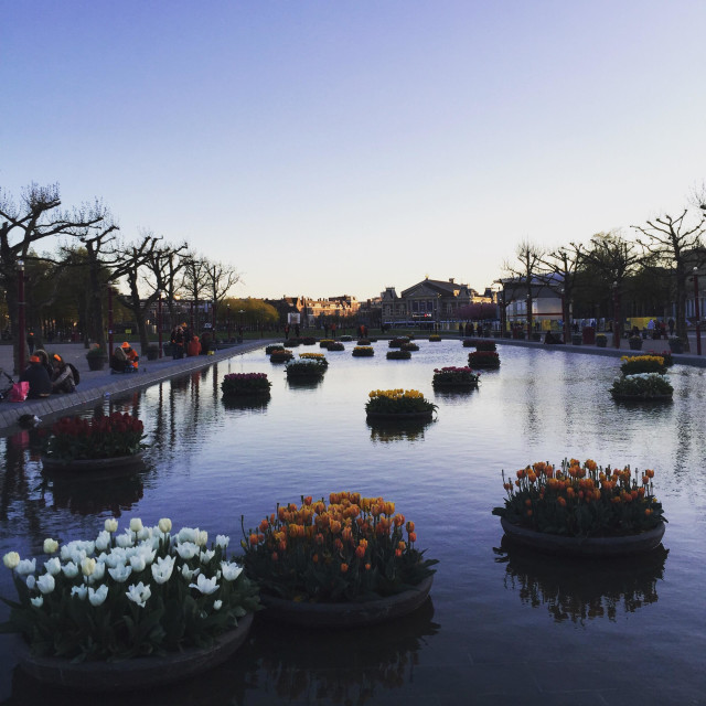 """""""Sunset hours in Amsterdam"""" stock image"""