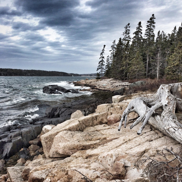 """""""Waves pound the rocky shores of the Schoodic Penninsula during a spring storm in Maine."""" stock image"""
