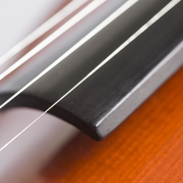 """Violin"" stock image"