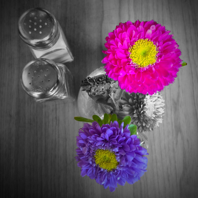 """""""Looking straight down at flowers in a vase and salt and pepper shakers on a restaurant table"""" stock image"""