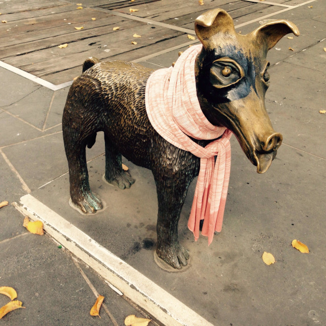 """""""Dog sculpture wearing a scarf in Melbourne Australia"""" stock image"""
