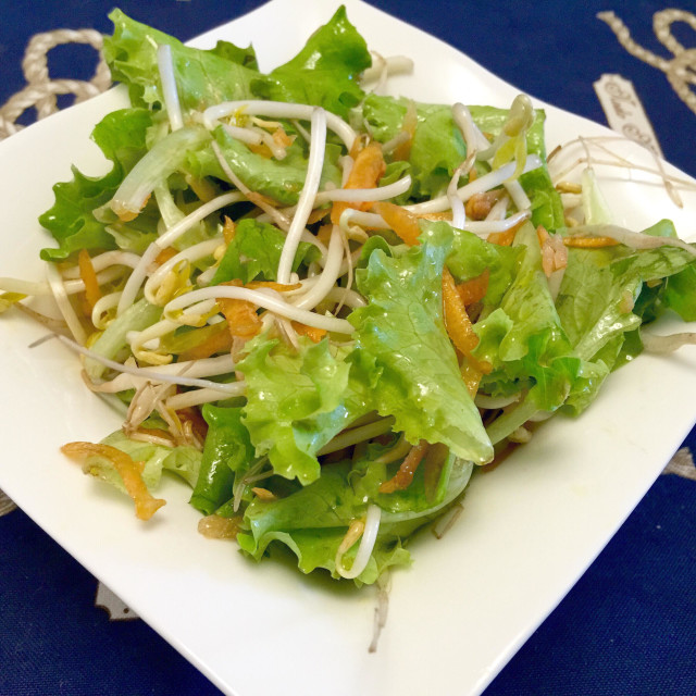 """""""Healthy salad, soya sprouts and butter leaves"""" stock image"""