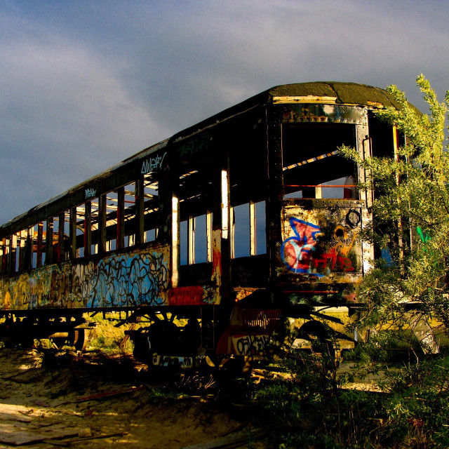 """Graffitied school bus"" stock image"