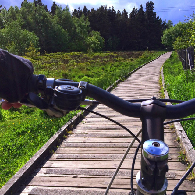 """Mountain Biking along a wooden boardwalk on Otley Chevin"" stock image"