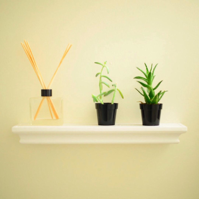 """Chopsticks and succulents"" stock image"
