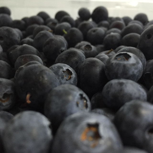 """Unfiltered Blueberries"" stock image"