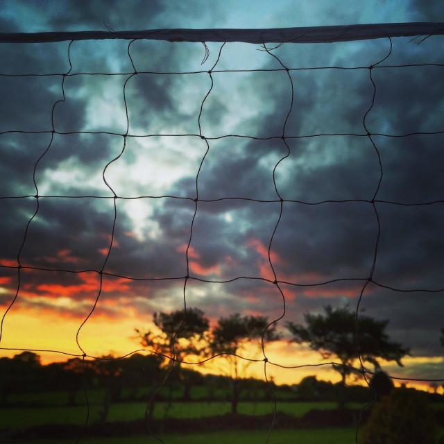 """Badminton net at sunset"" stock image"