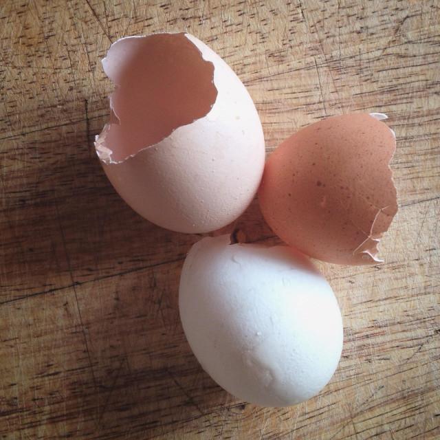 """Broken egg shells on wooden board"" stock image"