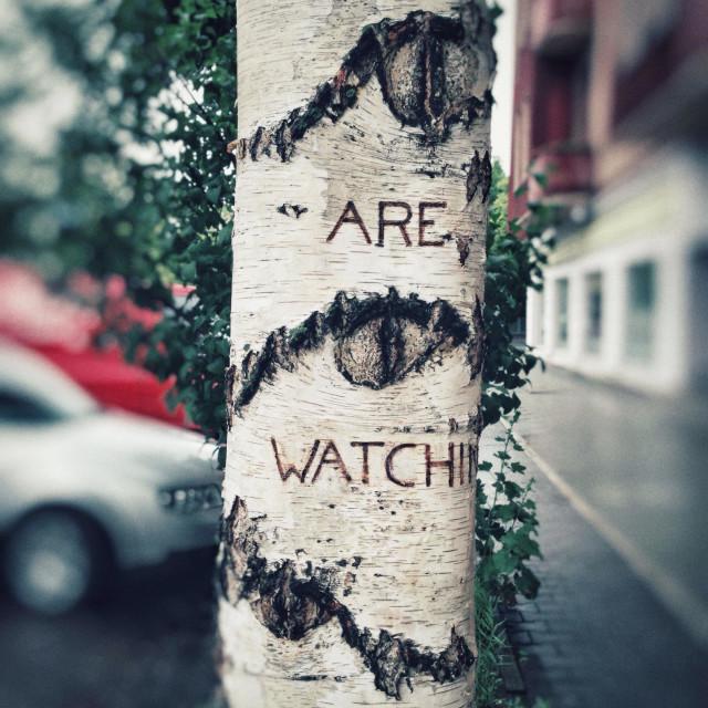 """Surveillance"" stock image"