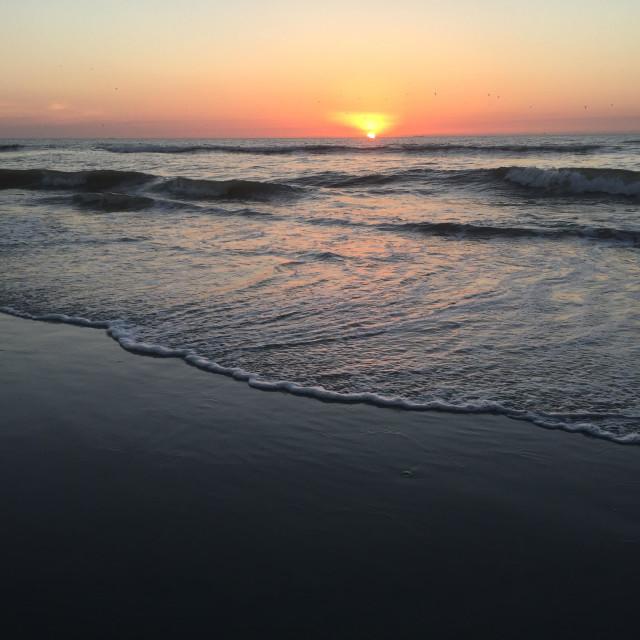 """Jacksonville sunrise"" stock image"