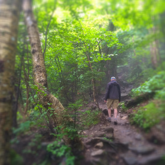 """""""Hiking towards Sterling Pond, Smugglers Notch, Stowe, Vermont, USA"""" stock image"""
