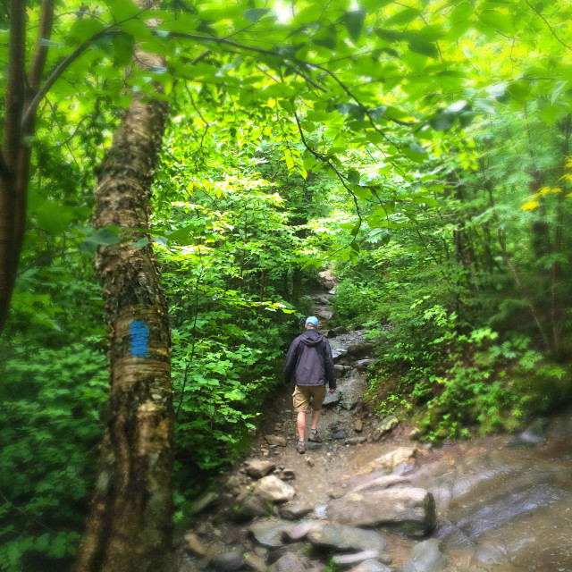 """""""Man hiking on path towards Sterling Pond, Smugglers Notch, Stowe, Vermont"""" stock image"""