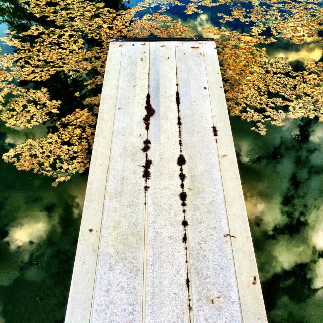 """The diving board of memories"" stock image"