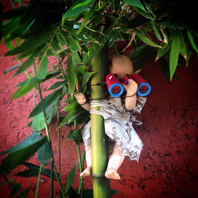 """""""A doll holding binoculars hangs on a tree in the Bazar Artesanal Mexicano market in Coyoacan, Mexico City, Mexico"""" stock image"""