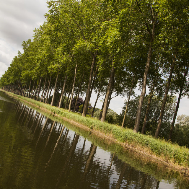 """""""Bruges To Damme Canal"""" stock image"""