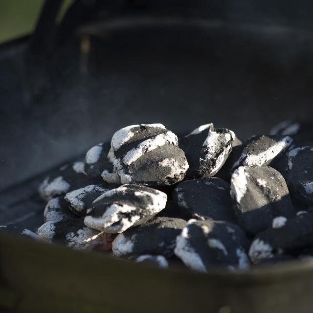 """""""Smoking Charcoal"""" stock image"""