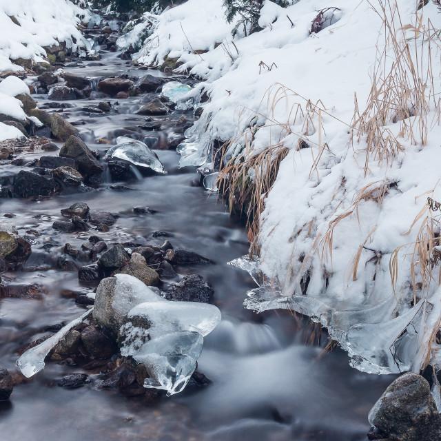 """""""Frozen creek"""" stock image"""