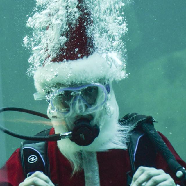 """Merry Christmas!"" stock image"