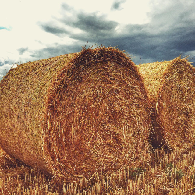 """""""Hay bales with approaching storm"""" stock image"""