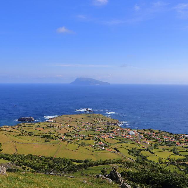 """""""Ponta Delgada Flores"""" stock image"""