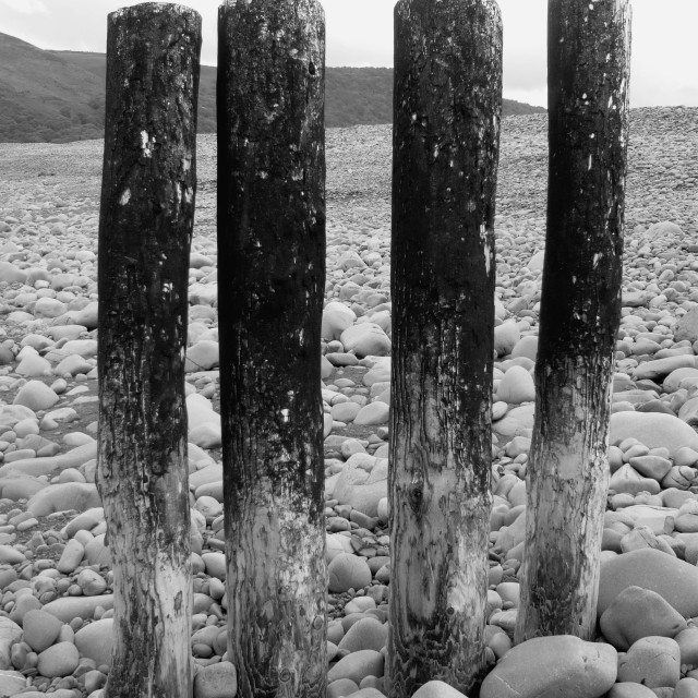 """Wooden posts on beach 1"" stock image"