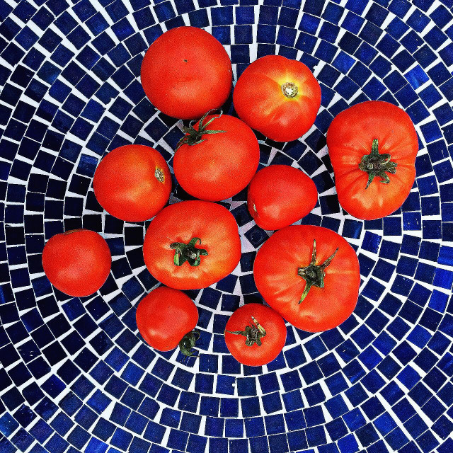 """Freshly harvested tomatoes arranged on a blue mosaic tabletop"" stock image"