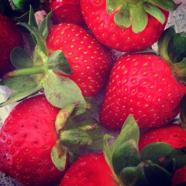 """Eve's Delight Strawberries"" stock image"
