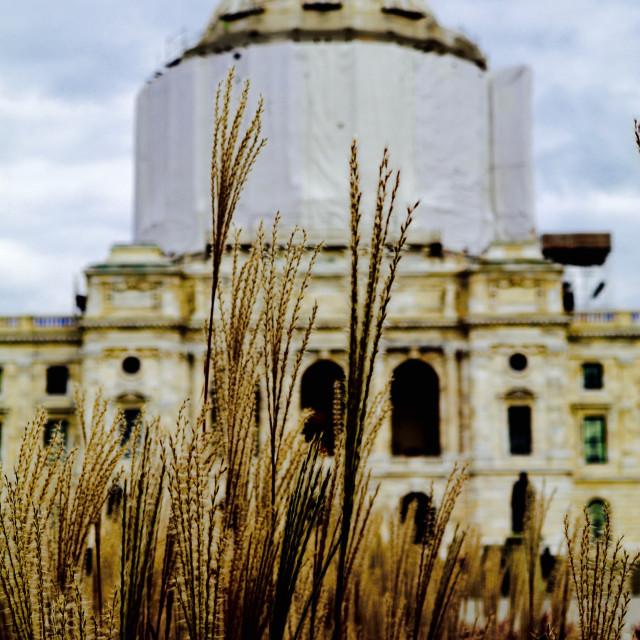"""Minnesota State Capitol"" stock image"