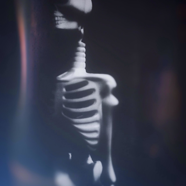 """""""Toy skeleton."""" stock image"""