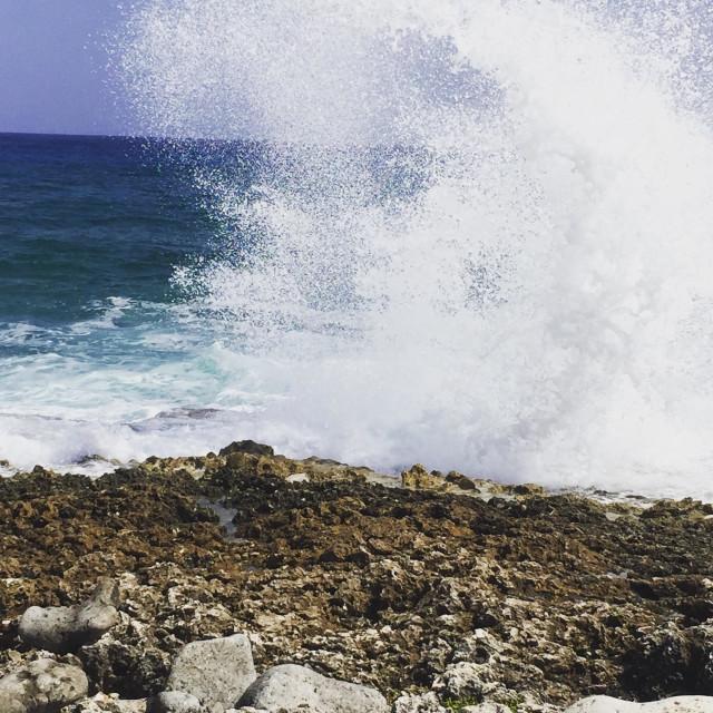 """""""Big splashing ashore."""" stock image"""