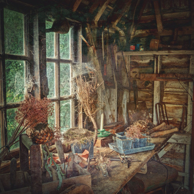 """Inside the old potting shed at Nuffield Place, UK"" stock image"