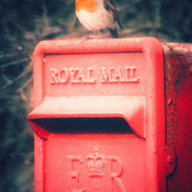 """""""A robin red breast sitting on top of a rusting Royal Mail Post Box."""" stock image"""