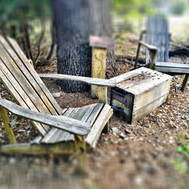 """""""Two old wooden chairs and a box table out in a forest."""" stock image"""