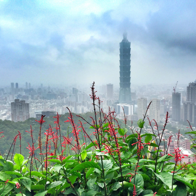 """Taipei City and Taipei101"" stock image"