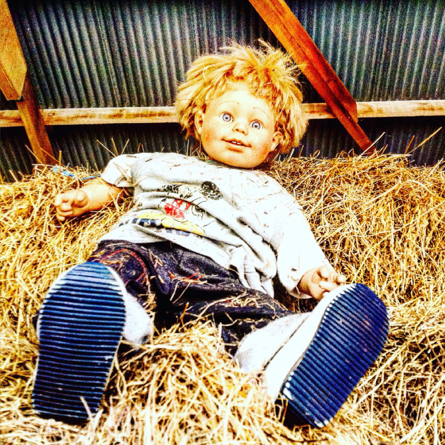 """Doll in the haystack"" stock image"