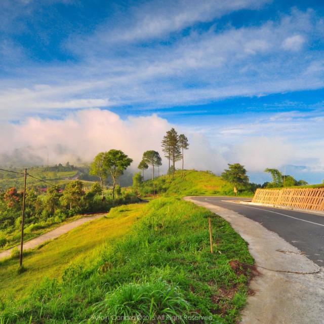 """Lawang Park, West Sumatera. Indonesia"" stock image"