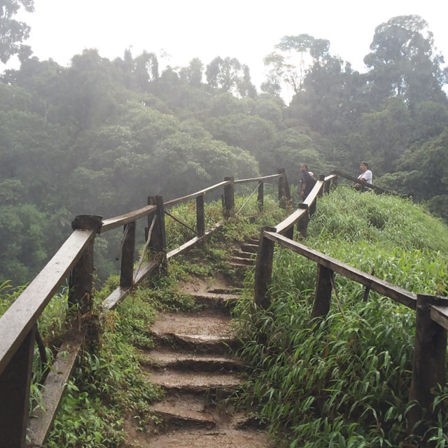 """""""Walk way to little hill nearby water fall"""" stock image"""