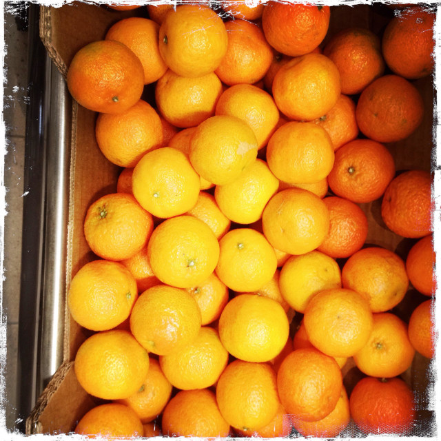 """Satsumas for sale in a supermarket"" stock image"